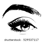 beautiful woman eye and brow