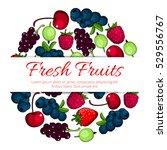 fruits and berries. vector... | Shutterstock .eps vector #529556767