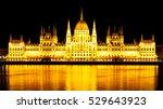 night panoramic view of... | Shutterstock . vector #529643923