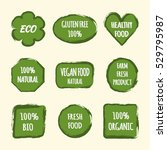 set of stickers for design... | Shutterstock .eps vector #529795987