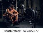 full body portrait of tired... | Shutterstock . vector #529827877