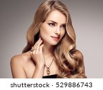 beautiful blonde woman beauty... | Shutterstock . vector #529886743