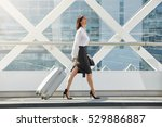 full body side portrait of... | Shutterstock . vector #529886887