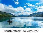 panoramic view of zeller see... | Shutterstock . vector #529898797