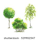 color sketched style trees' set ... | Shutterstock .eps vector #529902547