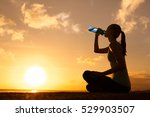 young woman enjoying a drink of ... | Shutterstock . vector #529903507