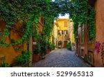 Old Street In Trastevere  Rome...