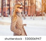 portrait beautiful elegant... | Shutterstock . vector #530006947
