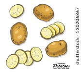 colored potatoes in sketch style | Shutterstock .eps vector #530206867