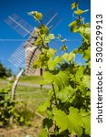 Small photo of Vineyards and windmill near Loupiac, Gironde, Aquitaine, France