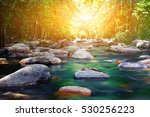 Stock photo stone canal in forest on sunrise time 530256223