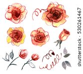 cute watercolor hand painted... | Shutterstock . vector #530261467
