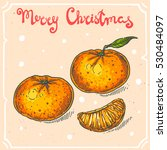 vector color illustration of... | Shutterstock .eps vector #530484097