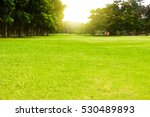 green field with sunrise... | Shutterstock . vector #530489893