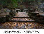 fall leaves covering a bridge... | Shutterstock . vector #530497297