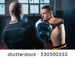 training fight in the gym.... | Shutterstock . vector #530500333