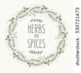 hand drawn herbs and spices... | Shutterstock .eps vector #530721673