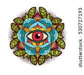 beautiful ornamental peony ... | Shutterstock . vector #530727193
