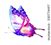 butterfly watercolor  isolated... | Shutterstock .eps vector #530774497