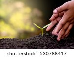 two hands of the children are... | Shutterstock . vector #530788417