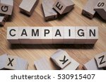Small photo of Campaign Word In Wooden Cube