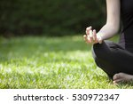 yoga in the park | Shutterstock . vector #530972347