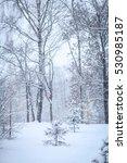 winter forest | Shutterstock . vector #530985187