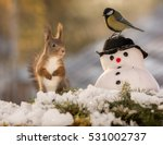 Stock photo red squirrel standing with a snowman and a titmouse on it with back light 531002737