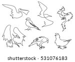 linear sketch birds silhouettes ...   Shutterstock .eps vector #531076183
