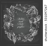 Floral Frame For Greeting Card...