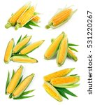 set fresh corn with green leaf... | Shutterstock . vector #531220267