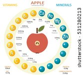 infographics about nutrients in ... | Shutterstock .eps vector #531280213