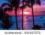 Colorful Hawaii
