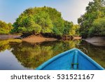 Boat Trip In Mangrove Tunnels...