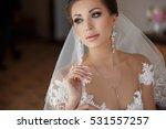 beautiful bride portrait... | Shutterstock . vector #531557257