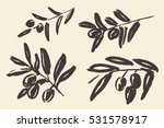 set of ink hand drawn olive... | Shutterstock .eps vector #531578917