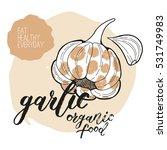 vector garlic. handwritten... | Shutterstock .eps vector #531749983