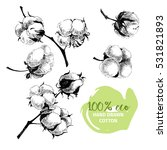 vector hand drawn set of cotton ... | Shutterstock .eps vector #531821893