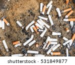 Smoked Cigarettes Butts In...