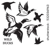 vector set of flying wild ducks.... | Shutterstock .eps vector #532036963
