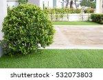 pathway in garden with green... | Shutterstock . vector #532073803