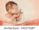 The Cute Newborn Baby Girl Wit...
