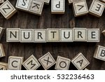 Small photo of the word of NURTURE on building blocks concept
