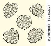 set of hand drawn vector... | Shutterstock .eps vector #532563127