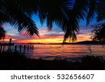 Beautiful Silhouette Coconut...