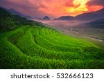Terraced Rice Field Landscape...