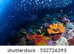Underwater World  Underwater...