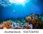 Underwater World Landscape ...