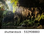 First Sun Lights At Jungle River