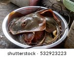 stingray at crab market in kep  ... | Shutterstock . vector #532923223